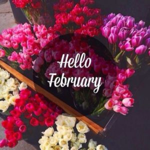 2018 Hello February Images Template