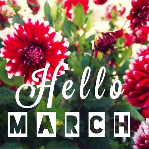 2018 Hello March Quotes