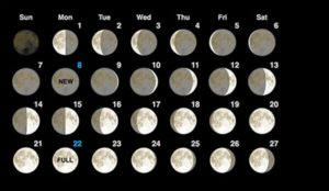 2018 Moon Phases February Calendar