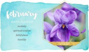 February Birthday Flower
