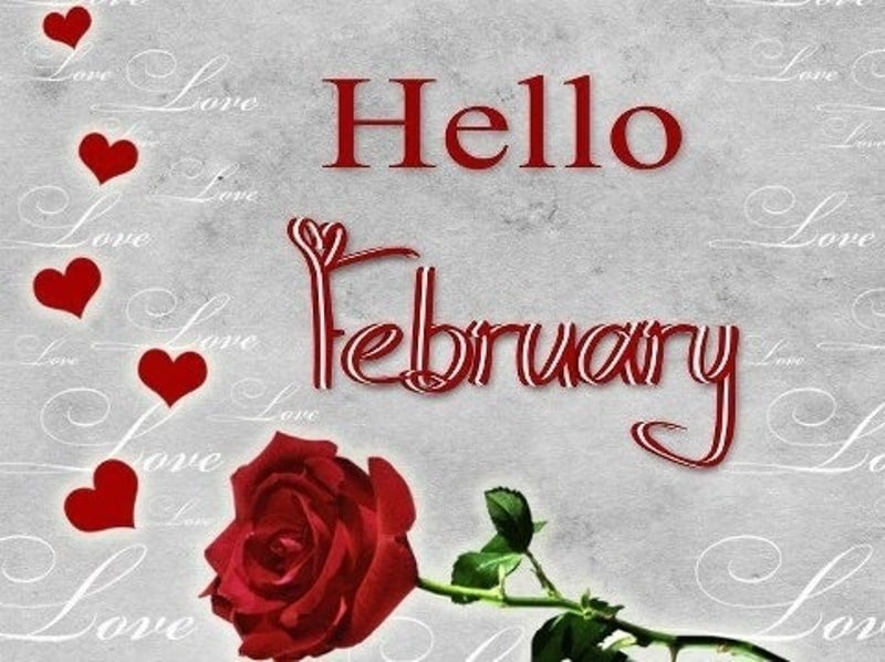 Goodbye January Hello February Pics