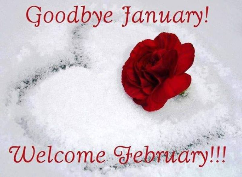 Welcome February 2018 Images