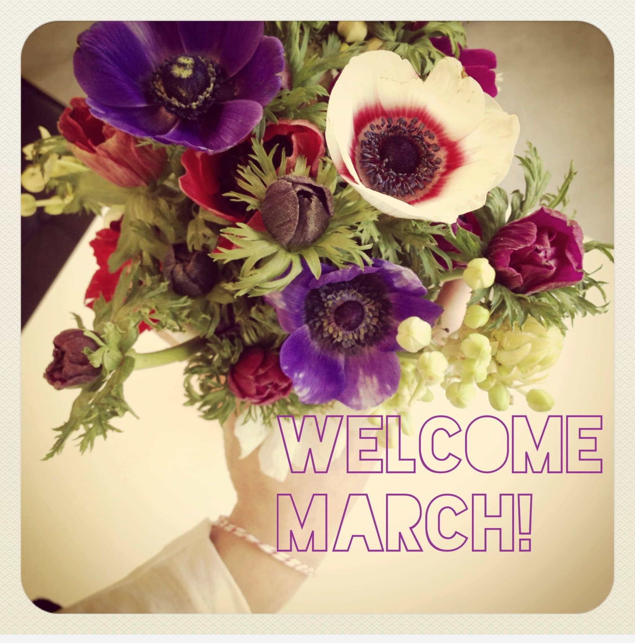 Welcome March Cards Quotes