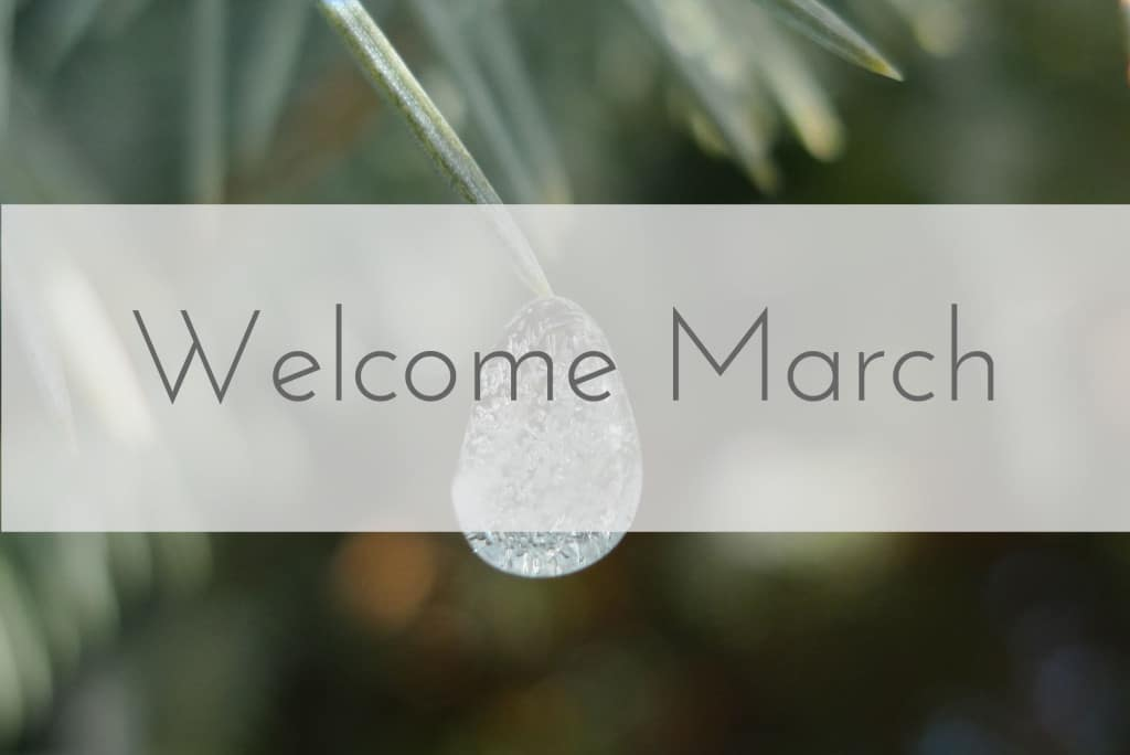 Welcome March Pics Pdf