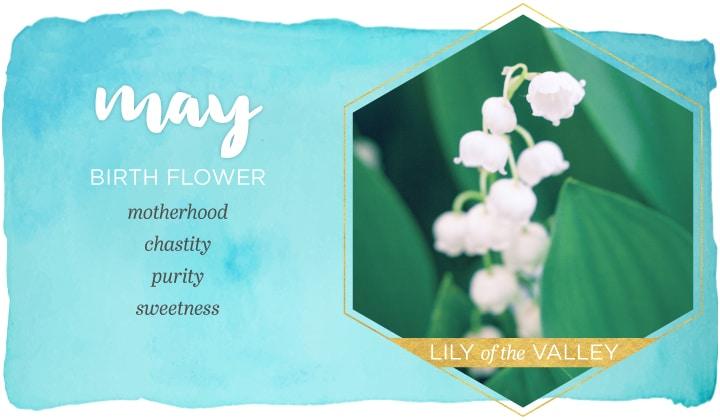 Birth Flower May