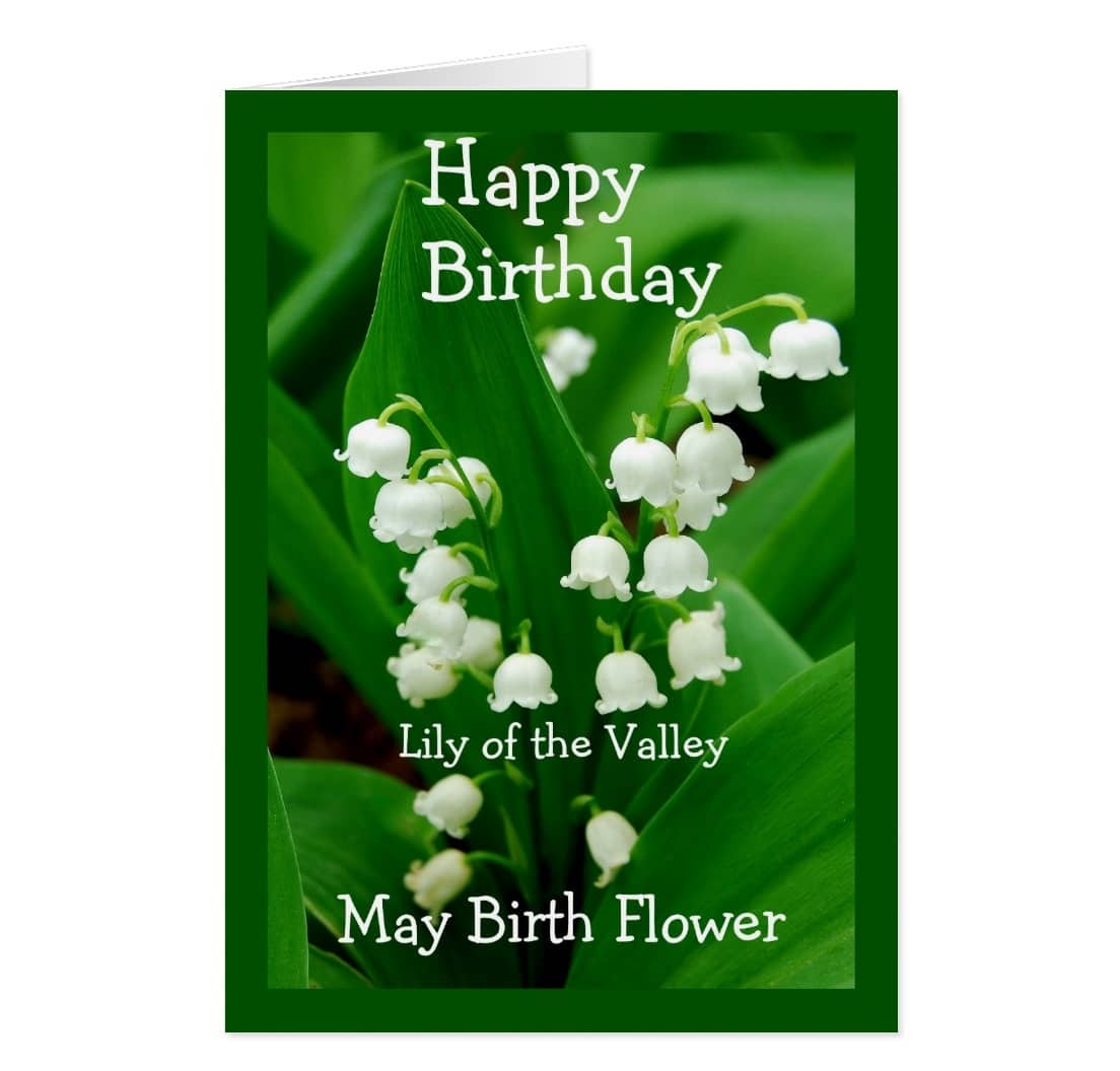 Birth Flower May Pictures