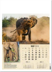 Calendar 2018 May