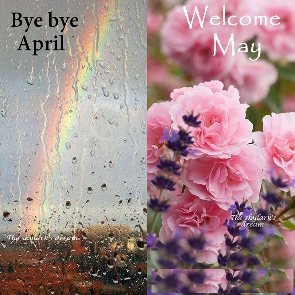 Goodbye April Hello March Sayings
