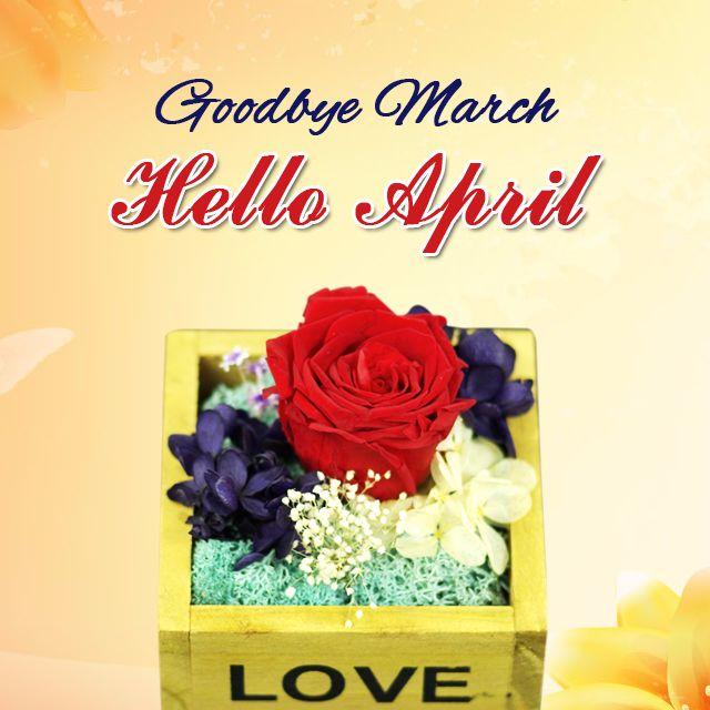 Good Bye March Hello April