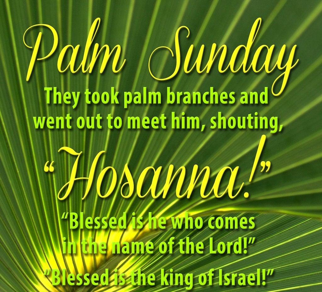 Palm Sunday Lesson