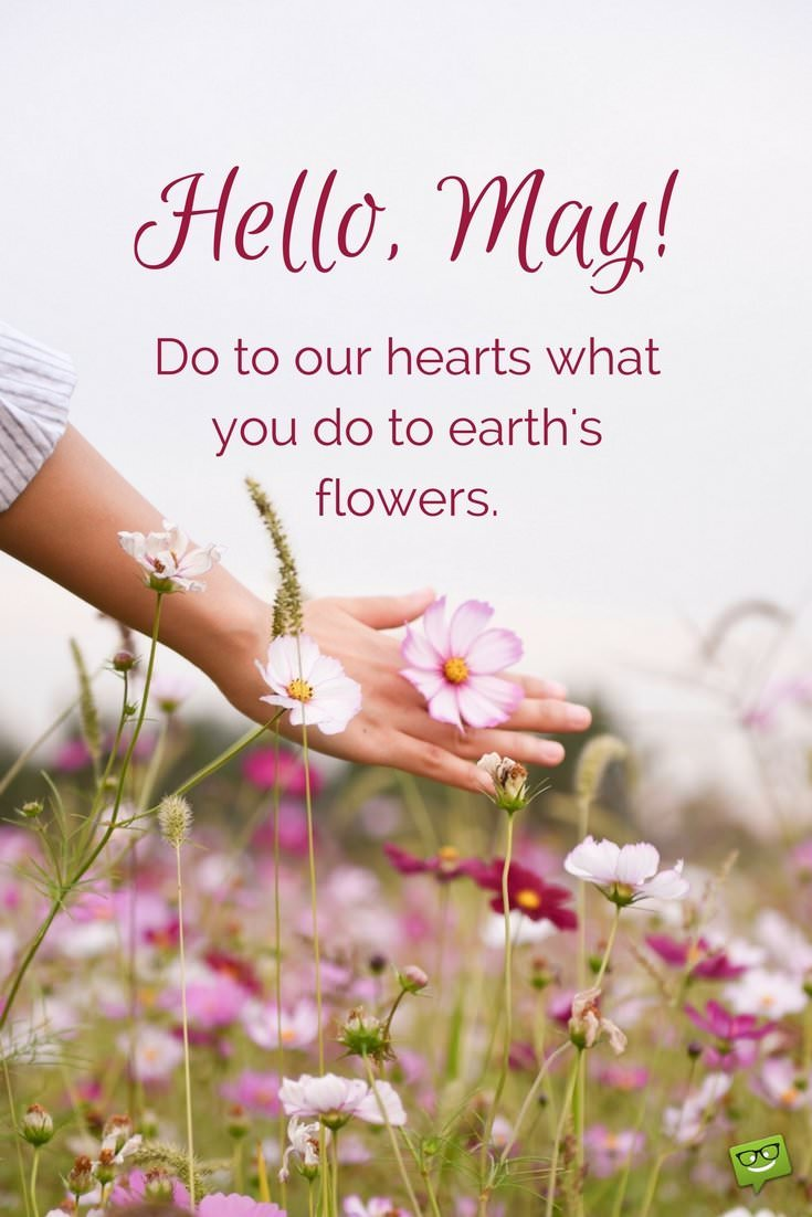 Hello May Quotes