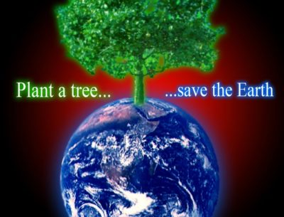 Quotes On Save Earth