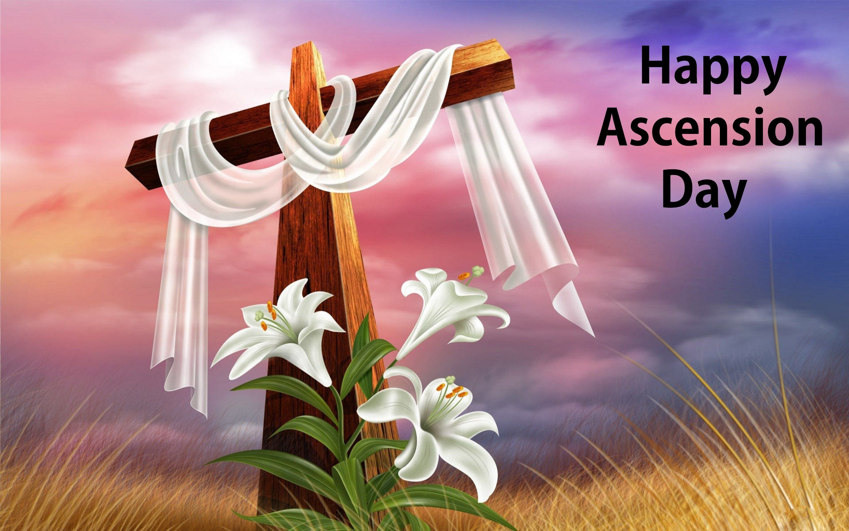 Happy Ascension Day 2018 Quotes
