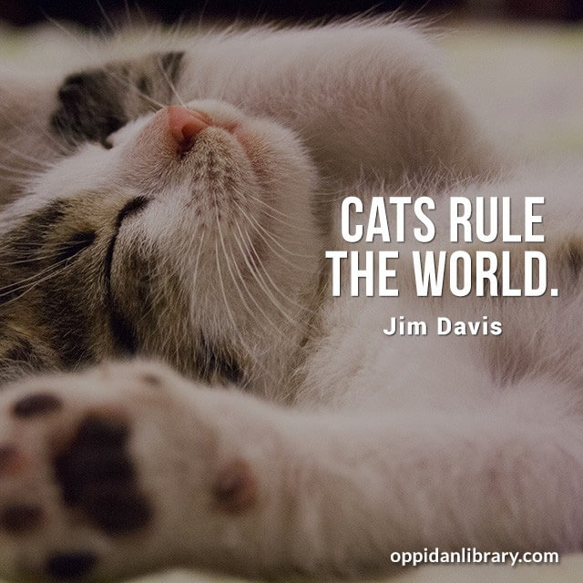 CATS RULE THE WORLD. GIM DAVIS