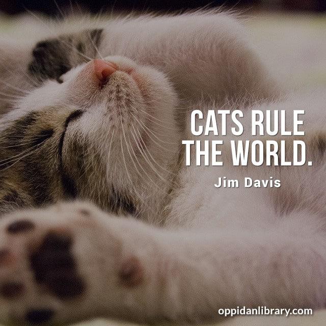 CATS RULE THE WORLD. GIM DAVIS
