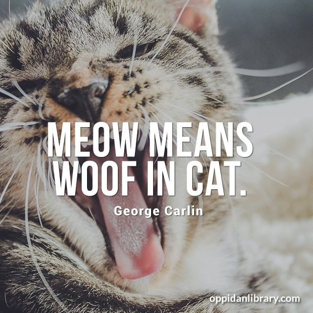 MEOW MEANS WOOF IN CAT. GEORGE CARLIN
