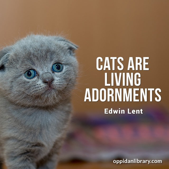 CATS ARE LIVING ADORNMENTS EDWIN LENT