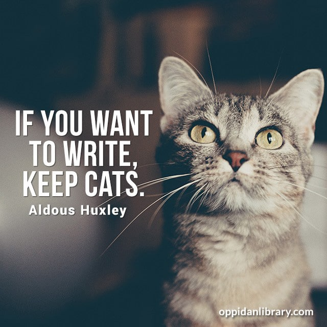 IF YOU WANT TO WRITE KEEP CATS. ALDOUS HUXLEY