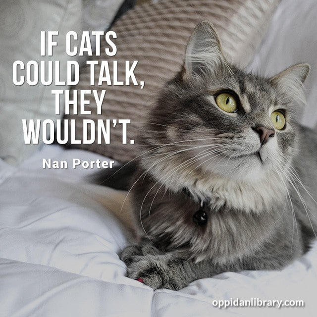IF CATS COULD TALK, THEY WOULDN'T. NAN PORTER