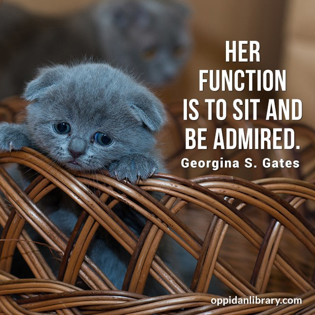 HER FUNCTION IS TO SIT AND BE ADMIRED. GEORGINA S. GATES