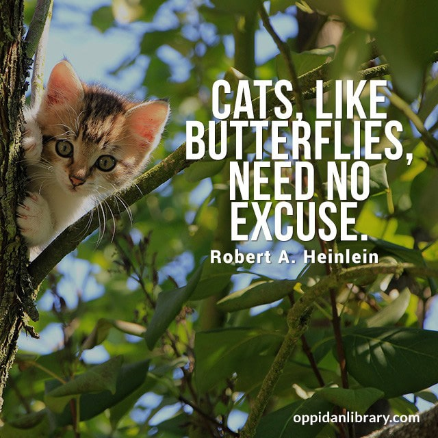 CATS, LIKE BUTTERFLIES, , NEED NO EXCUSE. ROBERT A. HEINLEIN