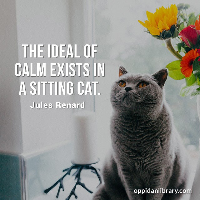 THE IDEAL OF CALM EXISTS IN A SITTING CAT. JULES RENARD