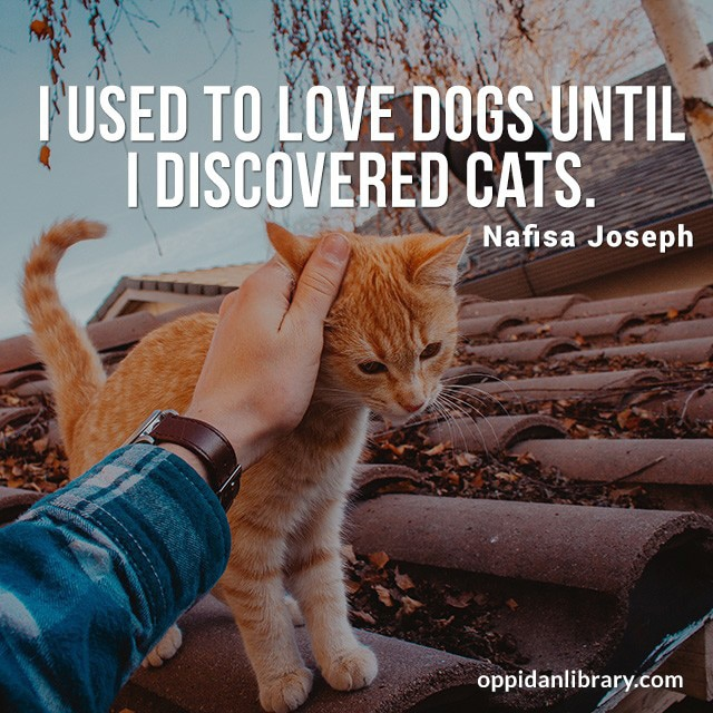 I USED TO LOVE DOGS UNTIL I DISCOVERED CATS. NAFISA JOSEPH