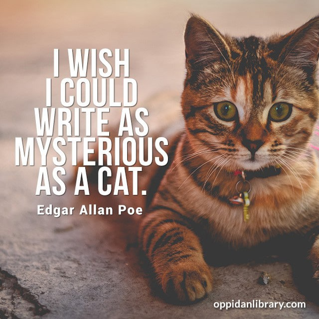 I WISH I COULD WRITE AS MYSTERIOUS AS A CAT. EDGAR ALLAN POE