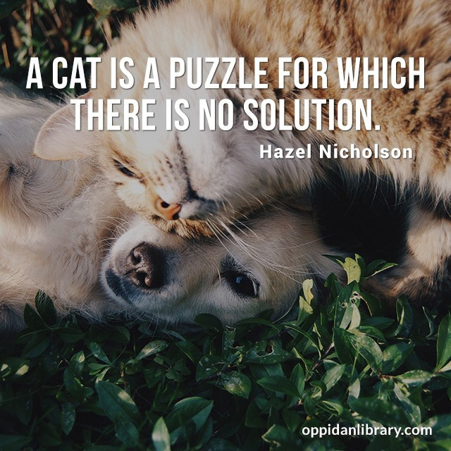 A CAT IS A PUZZLE FOR WHICH THERE IS NO SOLUTION. HAZEL NICHOLSON