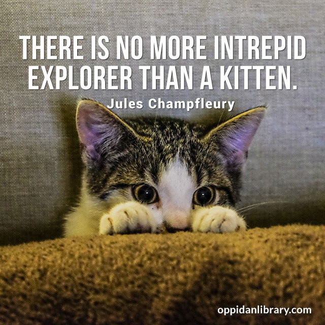 THERE IS NO MORE INTREPID EXPLORER THAN A KITTEN. JULES CHAMPFLEURY