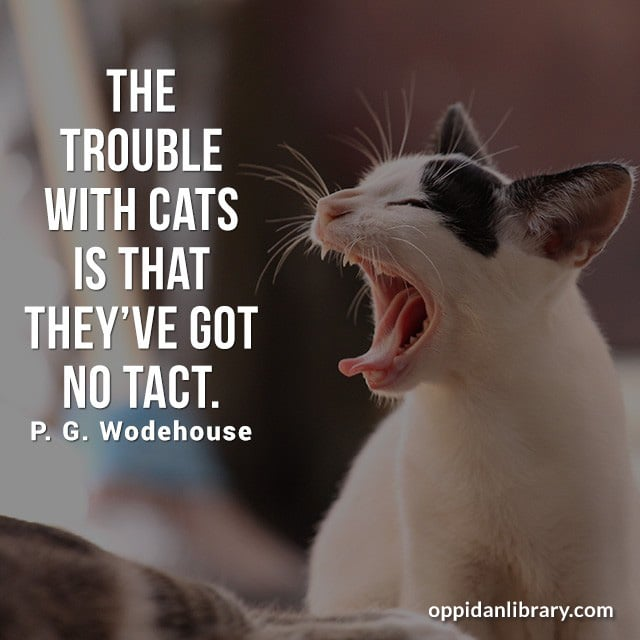 THE TROUBLE WITH CATS IS THAT THEY'VE GOT NO TACT. P. G. WODEHOUSE