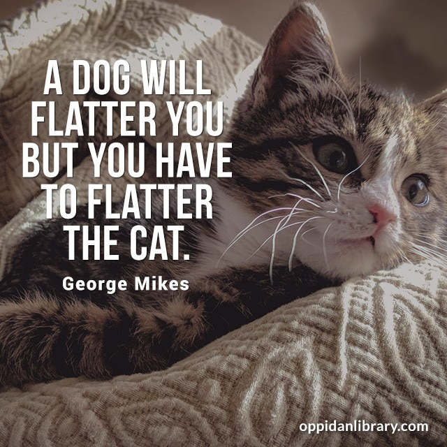 A DOG WILL FLATTER YOU BUT YOU HAVE TO FLATTER THE CAT. GEORGE MIKES