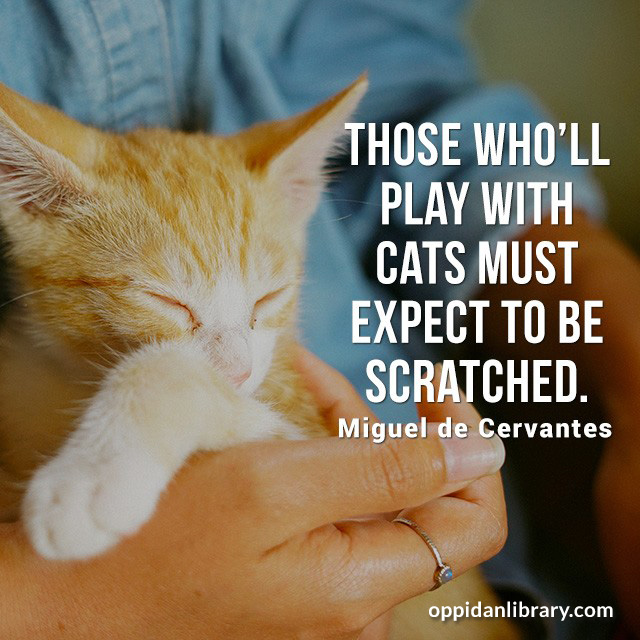 THOSE WHO'LL PLAY WITH CATS MUST EXPECT TO BE SCRATCHED. MIGUEL DE CERVANTES