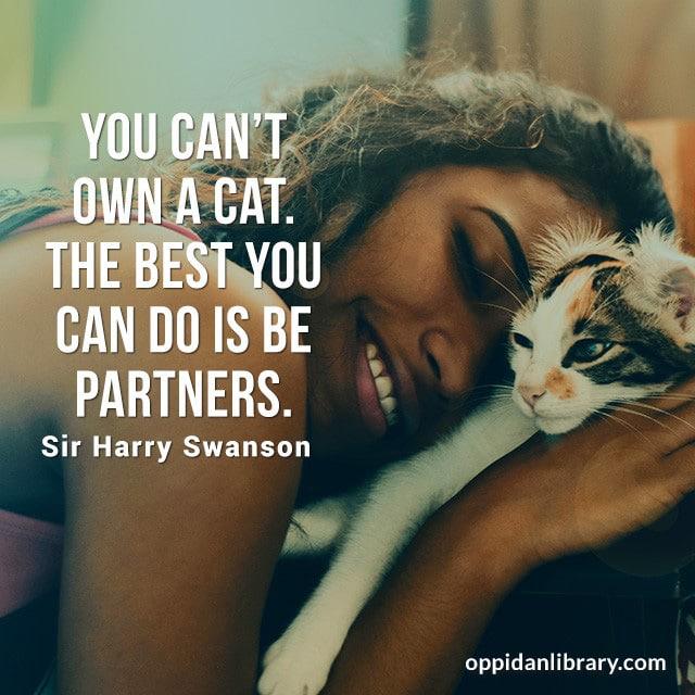 YOU CAN'T OWN A CAT. THE BEST YOU CAN DO IS BE PARTNERS. SIR HARRY SWANSON