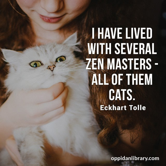 I HAVE LIVED WITH SEVERAL ZEN MASTERS- ALL OF THEM CATS. ECKHART TOLLE