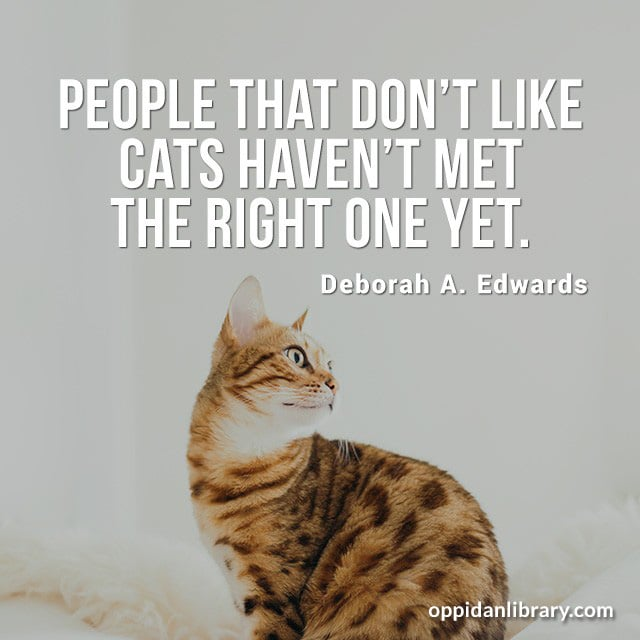 PEOPLE THAT DON'T LIKE CATS HAVEN'T MET THE RIGHT ONE YET. DEBORAH A. EDWARDS