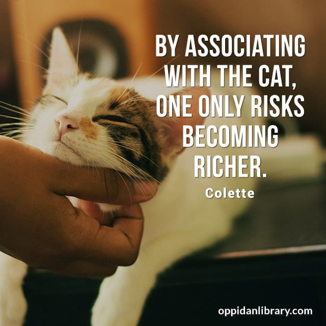BY ASSOCIATING WITH THE CAT, ONE ONLY RISKS BECOMING RICHER. COLETTE