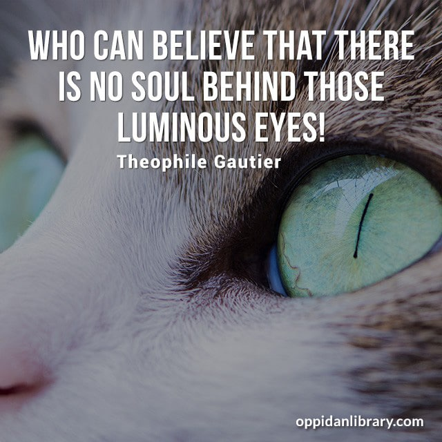 WHO CAN BELIEVE THAT THERE IS NO SOUL BEHIND THOSE LUMINOUS EYES! THEOPHILE GAUTIER