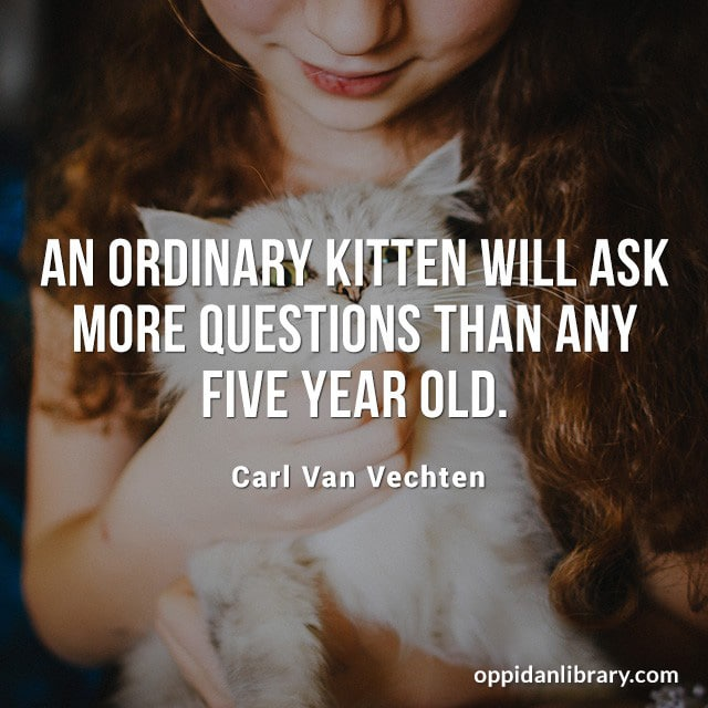 AN ORDINARY KITTEN WILL ASK MORE QUESTIONS THAN ANY FIVE YEAR OLD. CARL VAN VECHTEN