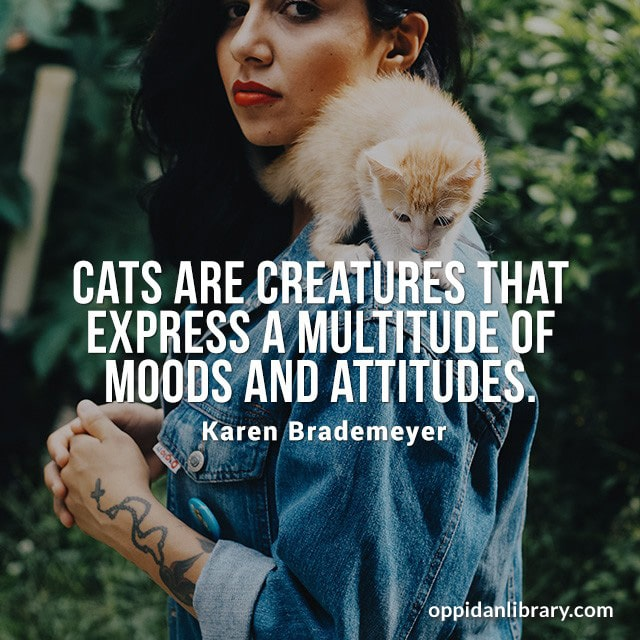 CATS ARE CREATURES THAT EXPRESS A MULTITUDE OF MOODS AND ATTITUDES. KAREN BRADEMEYER