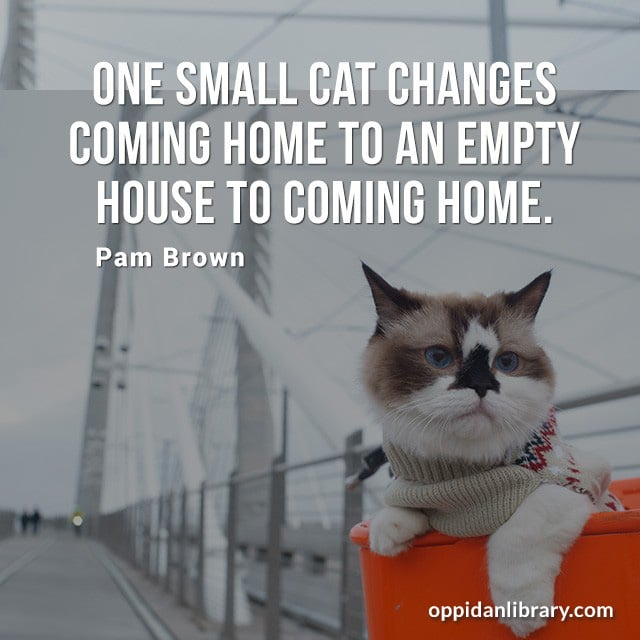 ONE SMALL CAT CHANGES COMING HOME TO AN EMPTY HOUSE TO COMING HOME. PAM BROWN