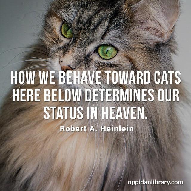 HOW WE BEHAVE TOWARD CATS HERE BELOW DETERMINES OUR STATUS IN HEAVEN. ROBERT A. HEINLEIN