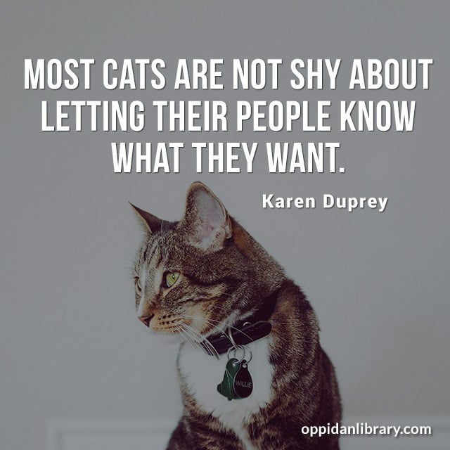 MOST CATS ARE NOT SHY ABOUT LETTING THEIR PEOPLE KNOW WHAT THEY WANT. KAREN DUPREY