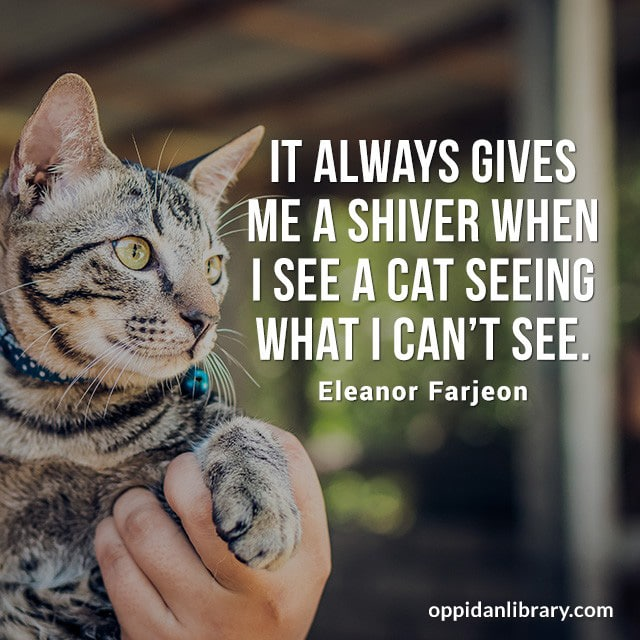 IT ALWAYS GIVES ME A SHIVER WHEN I SEE A CAT SEEING WHAT I CAN'T SEE. ELEANOR FARJEON