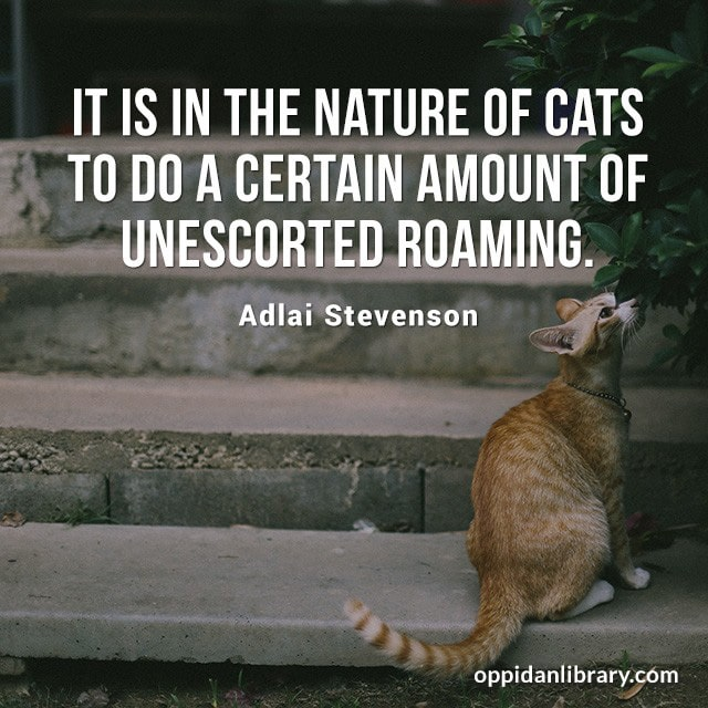 IT IS IN THE NATURE OF CATS TO DO A CERTAIN AMOUNT OF UNESCORTED ROAMING. ADLAI STEVENSON