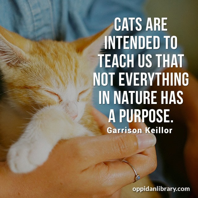CATS ARE INTENDED TO TEACH THAT NOT EVERYTHING IN NATURE HAS A PURPOSE. GARRISON KEILLOR