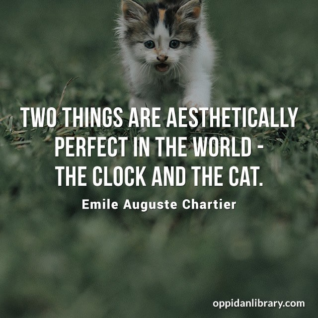 TWO THINGS ARE AESTHETICALLY PERFECT IN THE WORLD - THE CLOCK AND THE CAT. EMILE AUGUSTE CHARTIER
