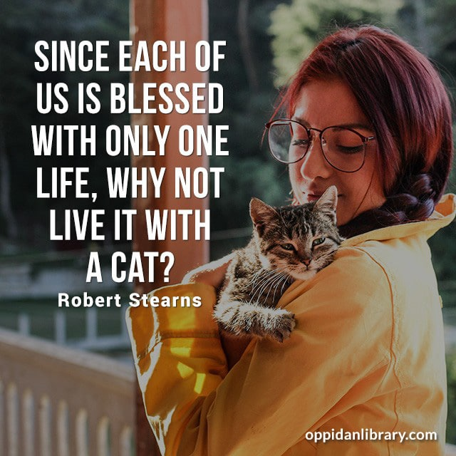 SINCE EACH OF US IS BLESSED WITH ONLY ONE LIFE, WHY NOT LIVE IT WITH A CAT? ROBERT STEARNS