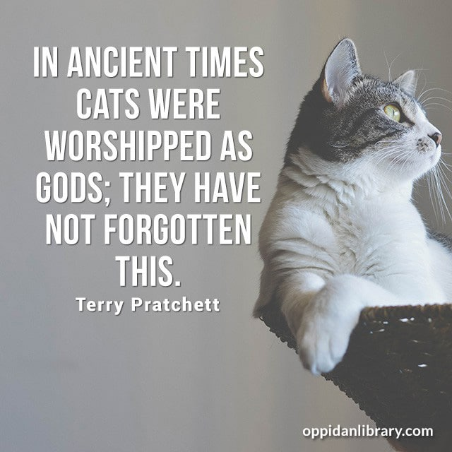 IN ANCIENT TIMES CATS WERE WORSHIPPED AS GODS; THEY HAVE NOT FORGOTTEN THIS. TERRY PRATCHETT