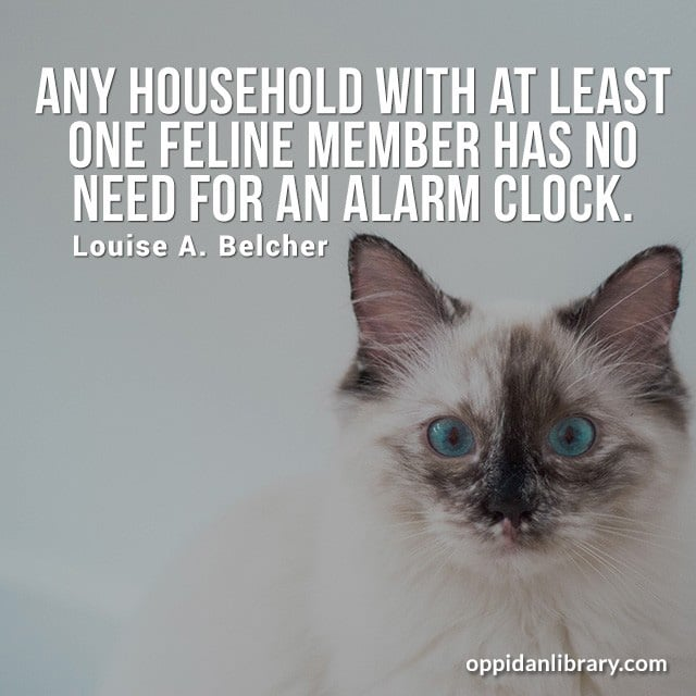 ANY HOUSEHOLD WITH AT LEAST ONE FEELING MEMBER HAS NO NEED FOR AN ALARM CLOCK. LOUISE A. BELCHER